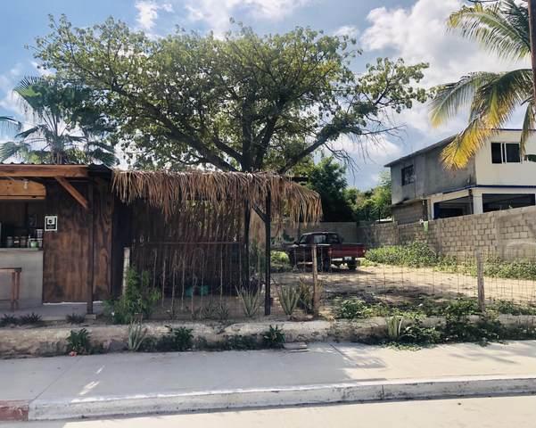 Flavio Olachea Montejano, San Jose del Cabo, MX  (MLS #21-3121) :: Own In Cabo Real Estate