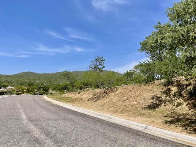 Las Colinas, Cabo Corridor, MX  (MLS #21-3134) :: Ronival