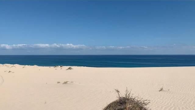 Boca Del Salado, East Cape, MX  (MLS #21-3174) :: Own In Cabo Real Estate