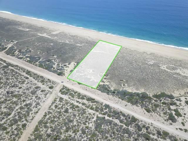 036 Calle Langosta Manzana 1 036, Pacific, MX  (MLS #21-3286) :: Own In Cabo Real Estate
