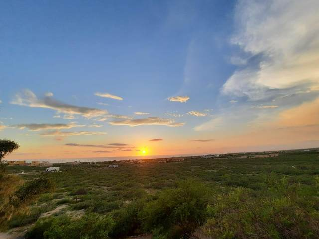 Calle Que Cambia S/N, Pacific, MX  (MLS #21-3288) :: Own In Cabo Real Estate