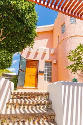 59 Carr. Transpeninsular #59, Cabo Corridor, MX  (MLS #21-3335) :: Own In Cabo Real Estate