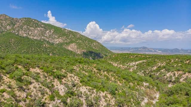 Camino A San Felipe, San Jose del Cabo, MX  (MLS #21-3343) :: Own In Cabo Real Estate