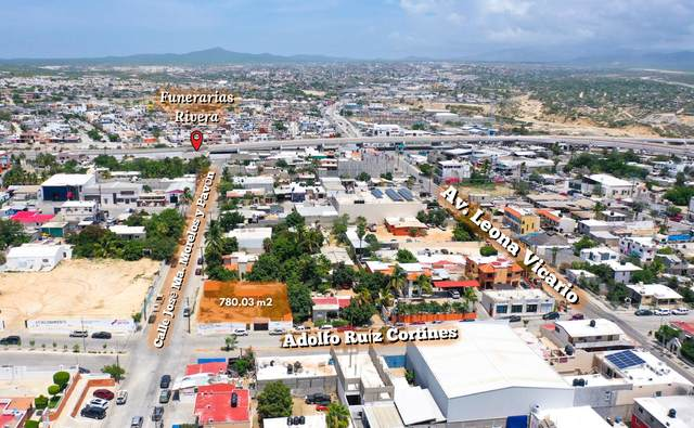 Adolfo Ruiz Cortines, Cabo San Lucas, MX  (MLS #21-3388) :: Own In Cabo Real Estate