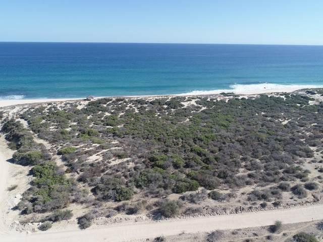 Cabo Del Este, East Cape, MX  (MLS #21-3405) :: Own In Cabo Real Estate