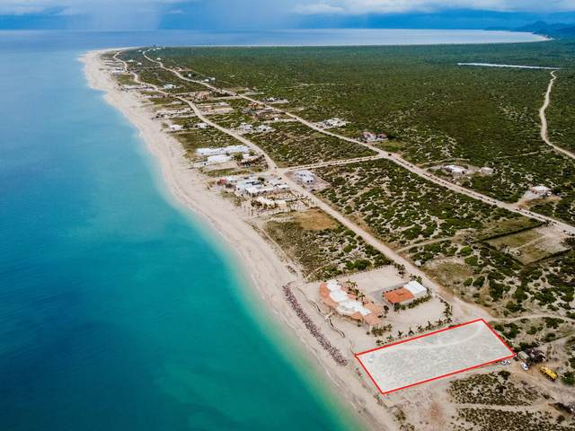 Lighthouse Point, East Cape, MX  (MLS #21-3416) :: Own In Cabo Real Estate
