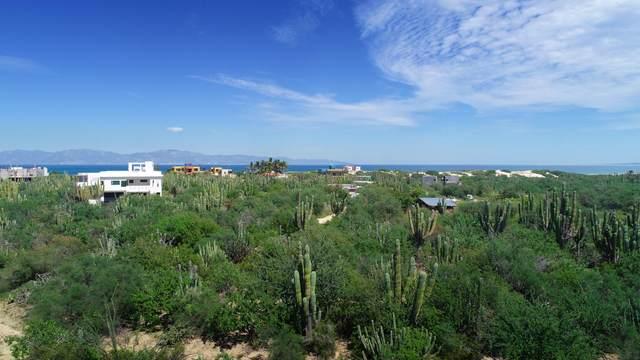 La Ventana Lot 2, La Paz, MX  (MLS #21-3435) :: Own In Cabo Real Estate