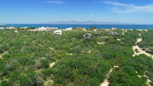 La Ventana Lot 3, La Paz, MX  (MLS #21-3436) :: Own In Cabo Real Estate