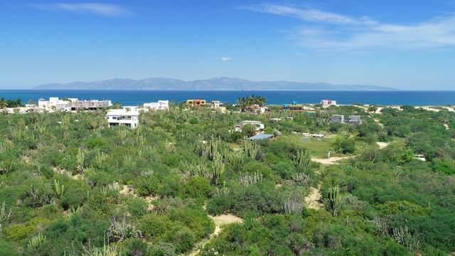 La Ventana Lot 4, La Paz, MX  (MLS #21-3440) :: Own In Cabo Real Estate
