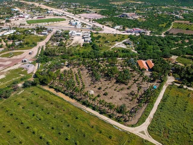 Camino Cabo Del Este, East Cape, MX  (MLS #21-3444) :: Own In Cabo Real Estate