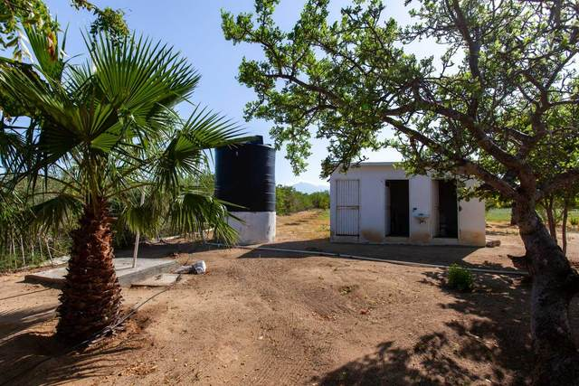 Calle S/N, Pacific, MX  (MLS #21-3466) :: Own In Cabo Real Estate