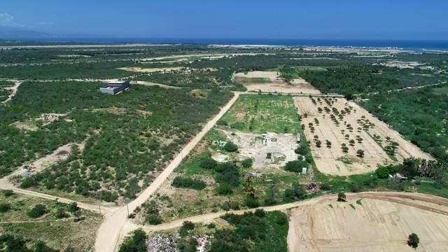 Carr. A La Ribera, East Cape, MX  (MLS #21-3472) :: Own In Cabo Real Estate
