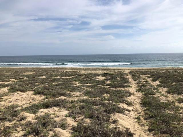 LOT 0054 Na, Pacific, MX  (MLS #21-3476) :: Own In Cabo Real Estate