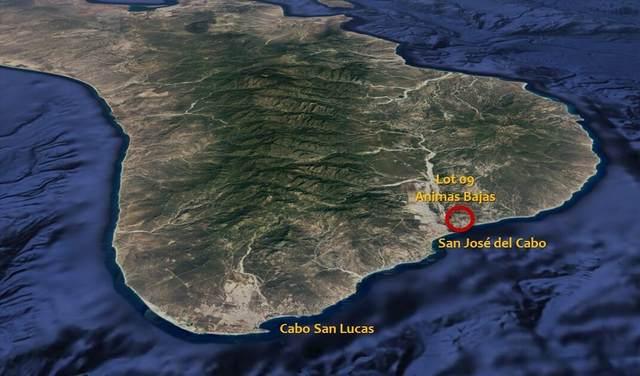 Lot 09 Las Animas Bajas, San Jose del Cabo, MX  (MLS #21-3489) :: Own In Cabo Real Estate