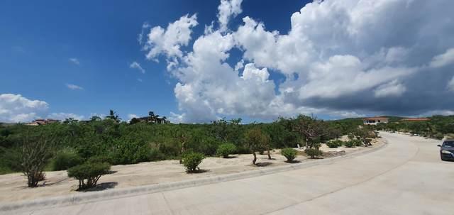 229 Padre Piccolo, San Jose del Cabo, MX  (MLS #21-3503) :: Own In Cabo Real Estate