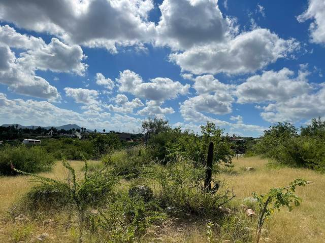 Navio, East Cape, MX  (MLS #21-3588) :: Own In Cabo Real Estate