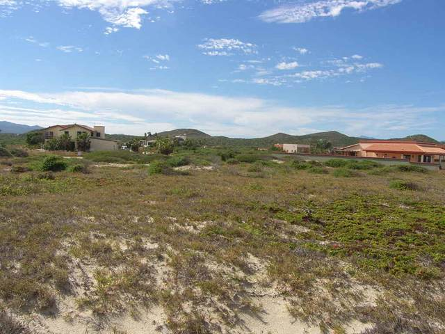 Row A Tortuga B.C.S., East Cape, BS  (MLS #21-437) :: Coldwell Banker Riveras