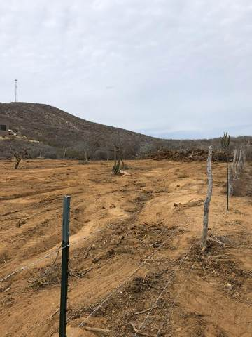Cerritos Lot 994,, Pacific, BS  (MLS #21-45) :: Own In Cabo Real Estate