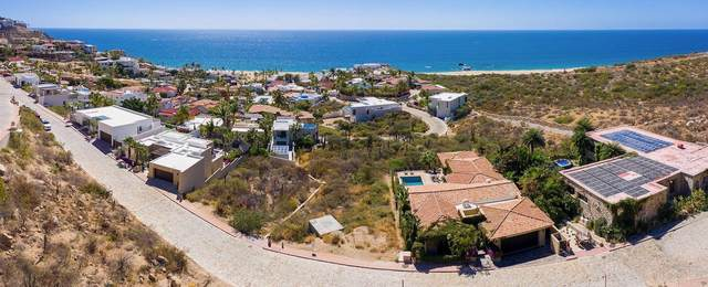 Pedregal De Cabo San Lucas, Cabo San Lucas, BS  (MLS #21-489) :: Own In Cabo Real Estate