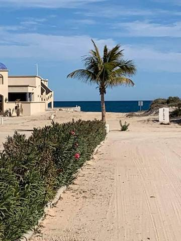 East Cape, East Cape, BS  (MLS #21-497) :: Own In Cabo Real Estate