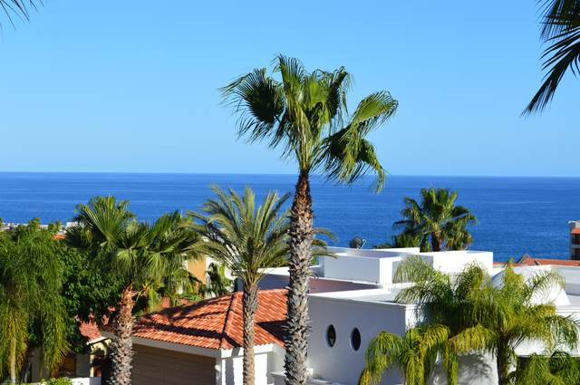Lomas De La Joya    Frailes L-202, San Jose del Cabo, BS  (MLS #21-569) :: Own In Cabo Real Estate
