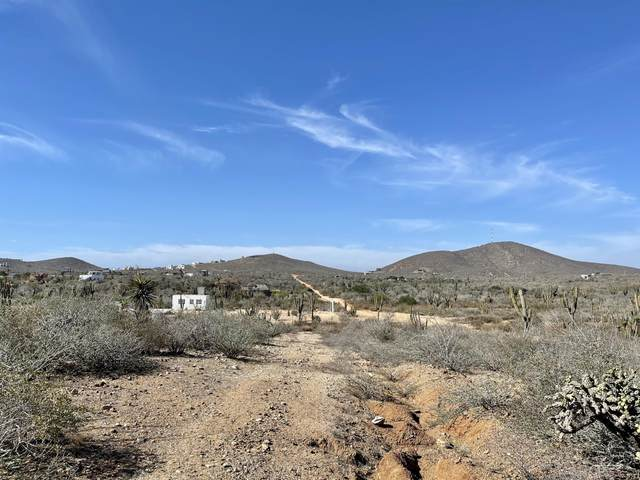 Acceso, Pacific, BS  (MLS #21-616) :: Ronival
