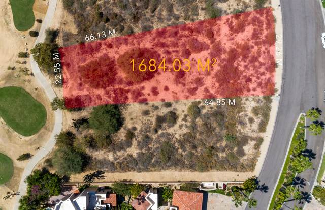27 Palmilla Estates, San Jose Corridor, BS  (MLS #21-679) :: Ronival