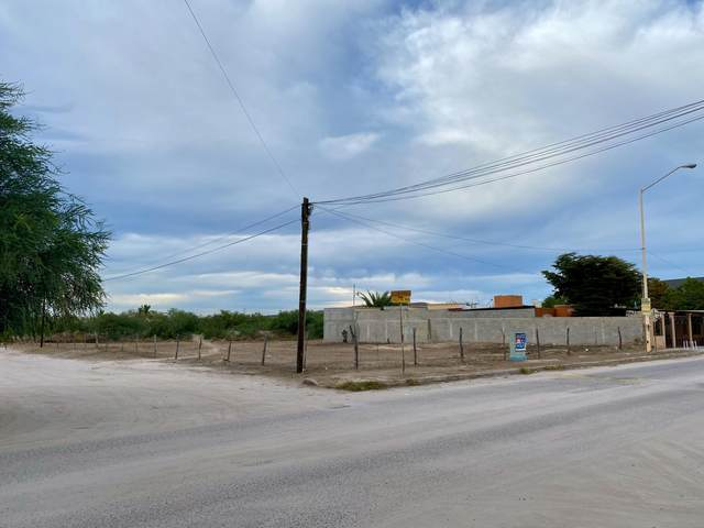 Calle Del Mar, La Paz, BS  (MLS #21-732) :: Ronival