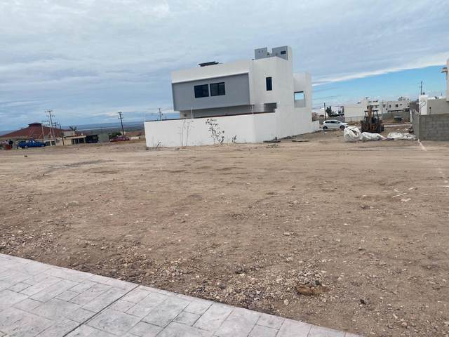 Calle Bahia Loreto, La Paz, BS  (MLS #21-770) :: Own In Cabo Real Estate