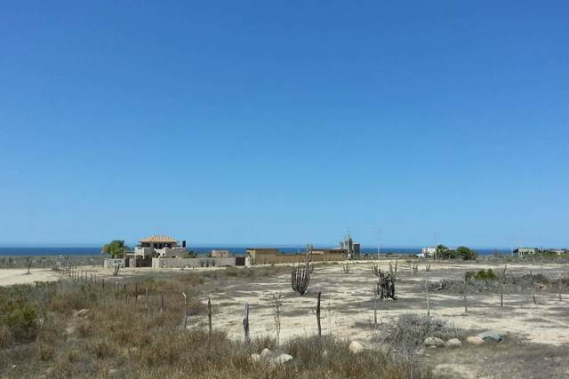 El Posito, Pacific, BS  (MLS #21-869) :: Own In Cabo Real Estate