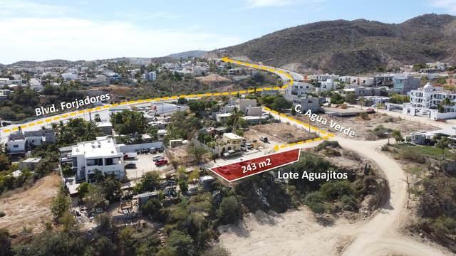 Lote Aguajitos, San Jose del Cabo, BS  (MLS #21-874) :: Own In Cabo Real Estate