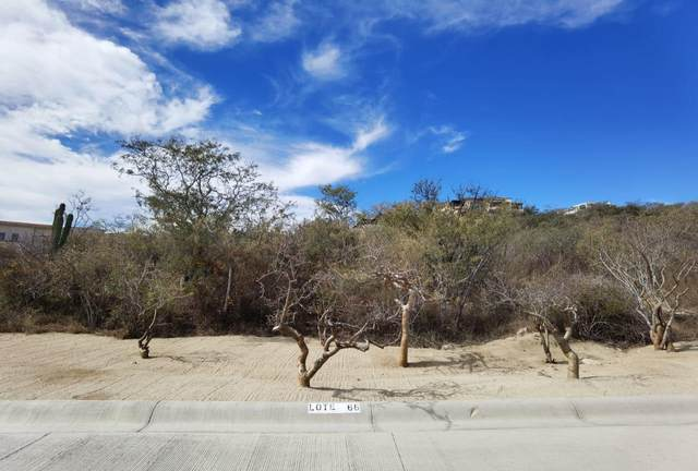 66 Altillo, San Jose del Cabo, BS  (MLS #21-878) :: Own In Cabo Real Estate