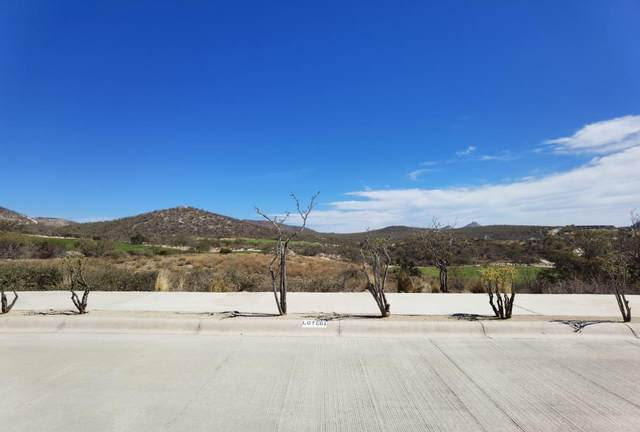 60 Altillo, San Jose del Cabo, BS  (MLS #21-882) :: Own In Cabo Real Estate