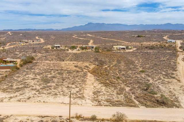 S/N, Pacific, BS  (MLS #21-930) :: Own In Cabo Real Estate