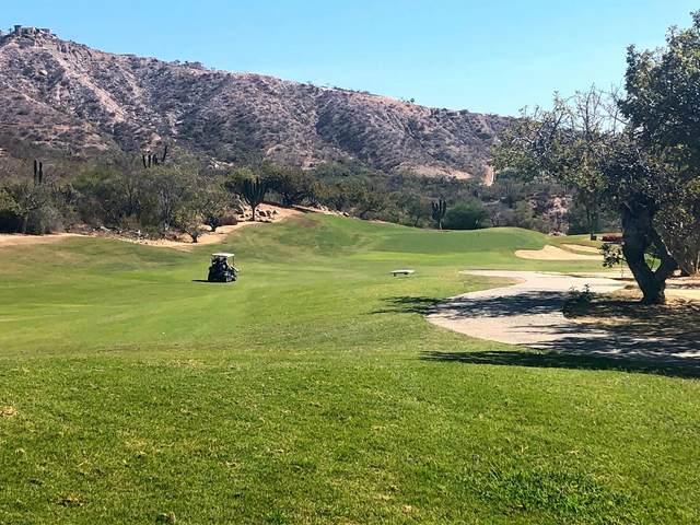 Homesite 67 Palmilla Estates, San Jose Corridor, BS  (MLS #21-953) :: Own In Cabo Real Estate