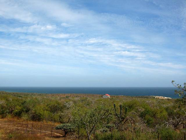 La Linea, East Cape, BS  (MLS #15-525) :: Ronival
