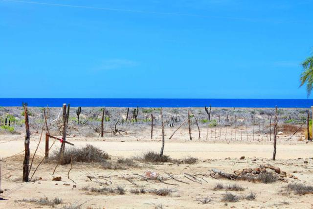 Calle Sin Nombre, Pacific, BS  (MLS #16-1437) :: Own In Cabo Real Estate