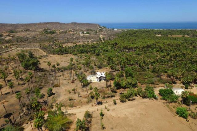 Calle Sin Nombre, Pacific, BS  (MLS #17-1606) :: Own In Cabo Real Estate