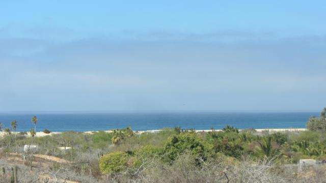 Migrino Lote 18, Pacific, BS  (MLS #17-587) :: Own In Cabo Real Estate
