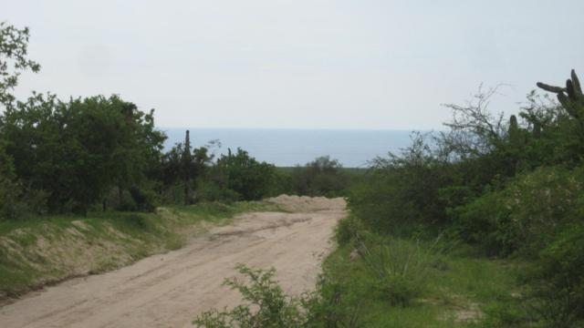 Matancitas, Pacific, BS  (MLS #17-942) :: Own In Cabo Real Estate