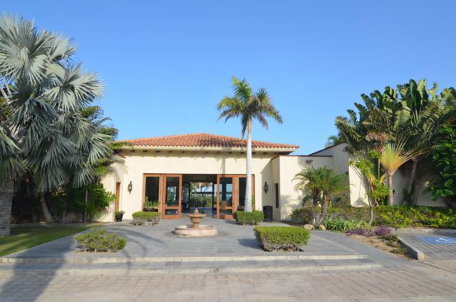 Ave. De La Cima, San Jose del Cabo, BS  (MLS #18-1674) :: Los Cabos Agent
