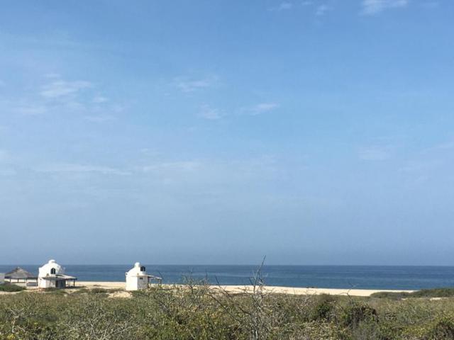 Km.83 Marazul Community S/N, Pacific, BS  (MLS #18-1714) :: Los Cabos Agent