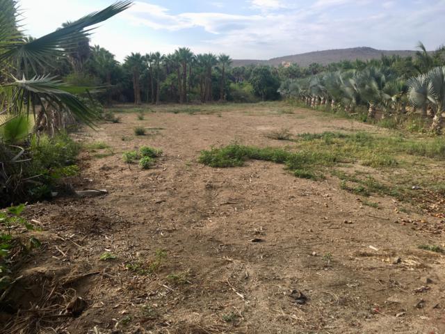 s/n Camino A La Playa La Cachora, Pacific, BS  (MLS #18-1723) :: Los Cabos Agent