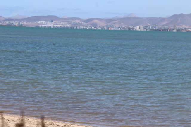 sin nombre Conocido S/N, La Paz, BS  (MLS #18-1772) :: Own In Cabo Real Estate