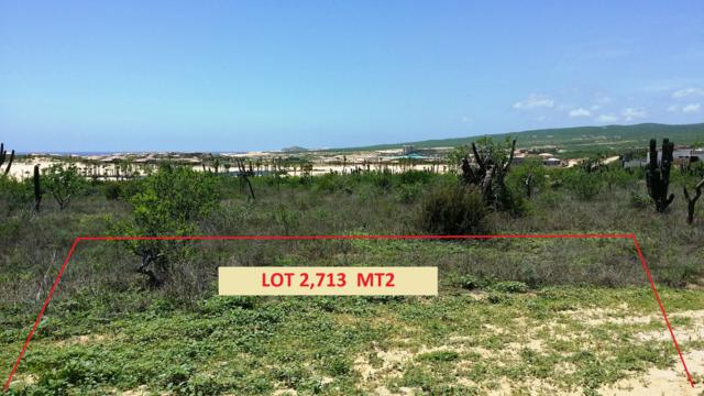 65 Sunset Hill, Pacific, BS  (MLS #18-1856) :: Los Cabos Agent