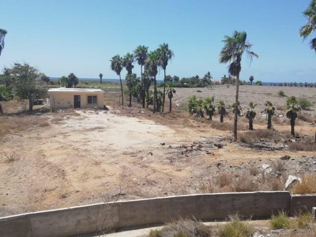 Ejido  Elias Calles, Pacific, BS  (MLS #18-1997) :: Own In Cabo Real Estate