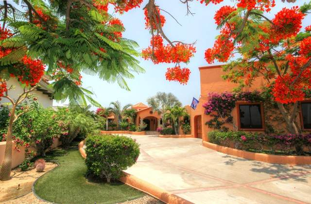 S/N, East Cape, BS  (MLS #18-2283) :: Own In Cabo Real Estate