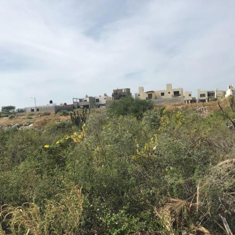 Calle Playa El Tuyle, Cabo San Lucas, BS  (MLS #18-285) :: Los Cabos Agent