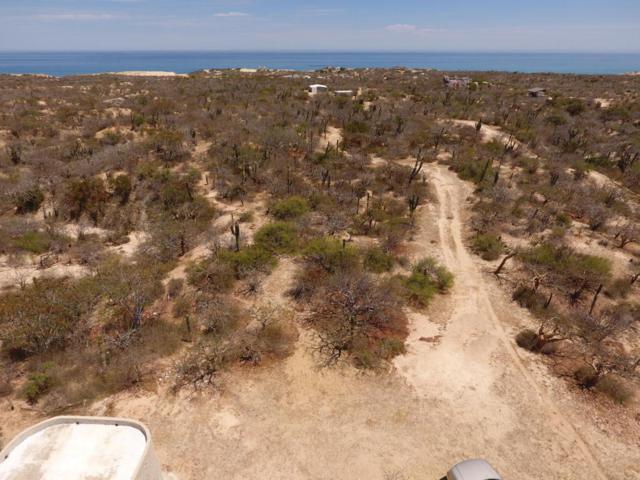 Fraccion 1 Rancho Dos Ballenas Phase 2, East Cape, BS  (MLS #18-940) :: Los Cabos Agent