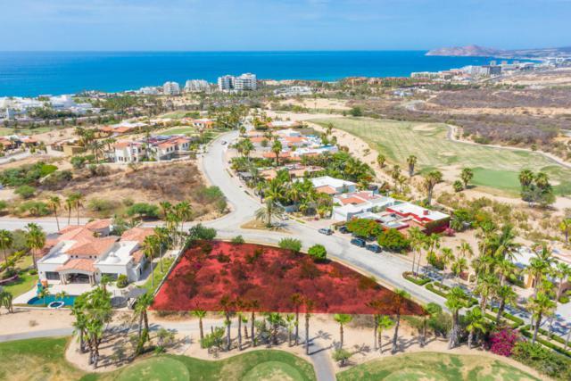 Paseo Bugambilias, San Jose Corridor, BS  (MLS #19-1235) :: Own In Cabo Real Estate